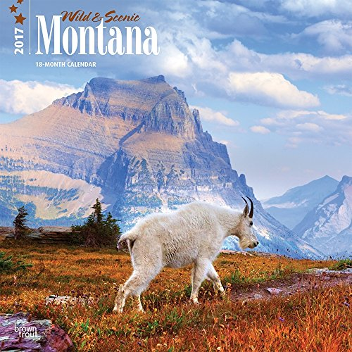 2017 Monthly Wall Calendar - Montana, Wild & Scenic