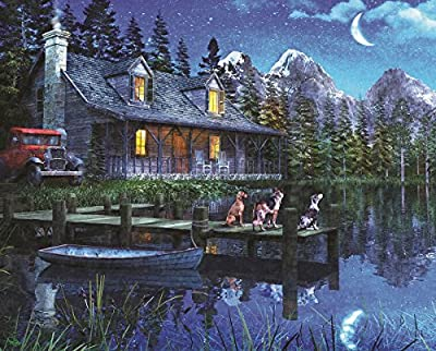 Springbok Puzzles - Moonlit Night - 1000 Piece Jigsaw Puzzle - Large 24 Inches by 30 Inches Puzzle - Made in USA - Unique Cut Interlocking Pieces