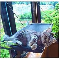 Cat Window Perches Amazon Com