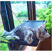 Cat Bed Window Perches Hammock Kitty Sunny Seat for Lager Cats Perch Furniture Lounge Window Sill Seat Window Mounted Animal Pet Cot Condos Heavy Duty Suction Cups Holds Up 50lb by JingStyle