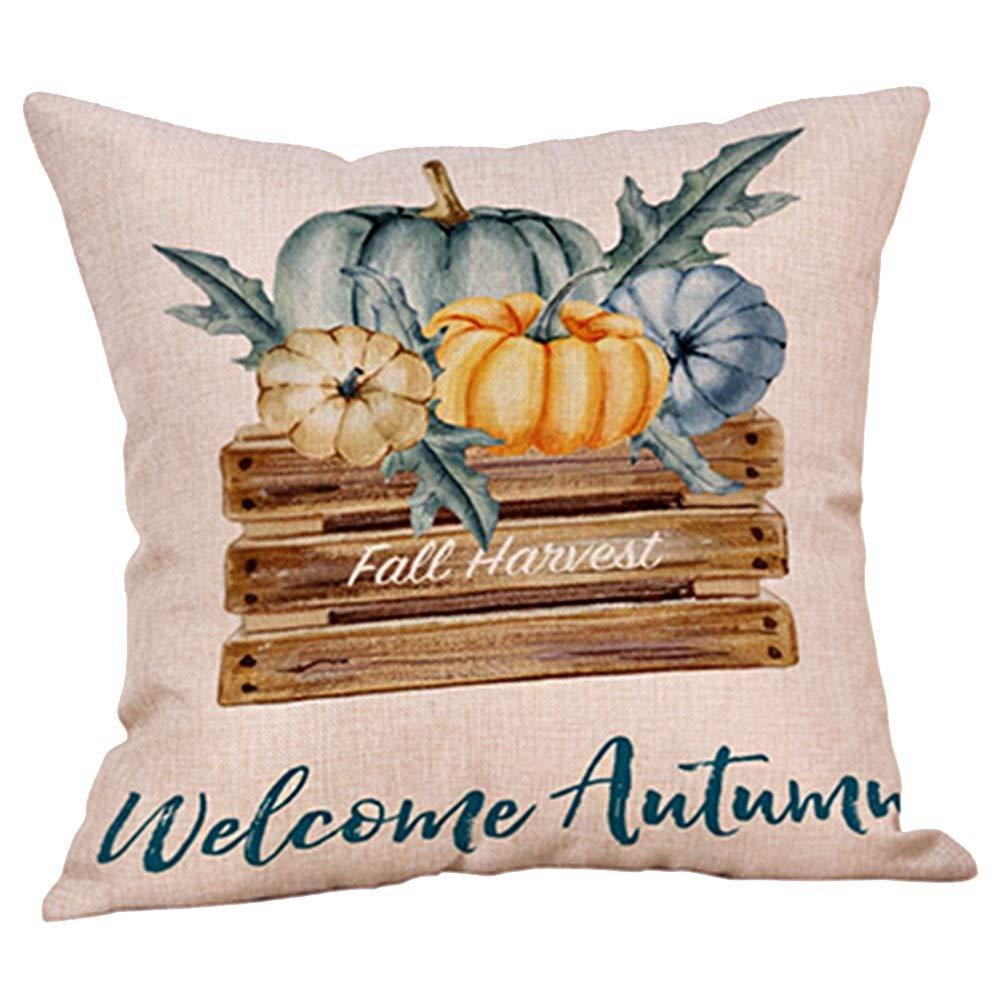 Cute farmhouse fall pillow cover welcome autumn pillow cover painted pumpkin pillow pumpkins pillow
