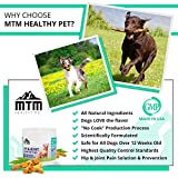 Dog-Glucosamine-Chondroitin-MSM-Turmeric-Soft-Chews-by-MTM-Healthy-Pet-All-Natural-Hip-and-Joint-Supplements-for-Dogs-For-Healthy-Joint-Function-and-Dog-Arthritis-Pain-Relief-120-Soft-Chews