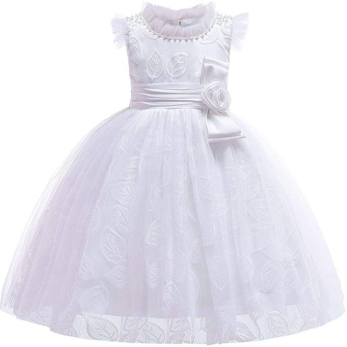 Amazon.com: Vestido de princesa de seda con bordado de ...
