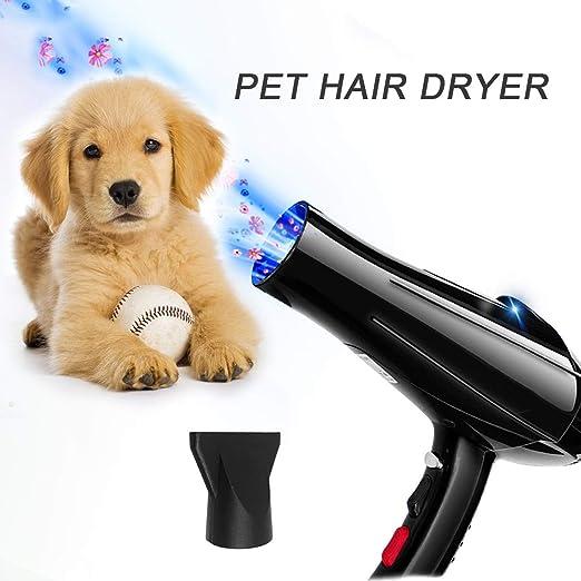 YLXD Secadora De Pelo para Mascotas Caninas Calentadora, 6 Calor Y ...
