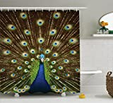 Ambesonne Peacock Shower Curtain Decor, Portrait of Peacock with Feathers Out Vibrant Colors Birds Summertime Garden Image Theme, Fabric Bathroom Set with Hooks, 69 x 70 inches Long Navy Green