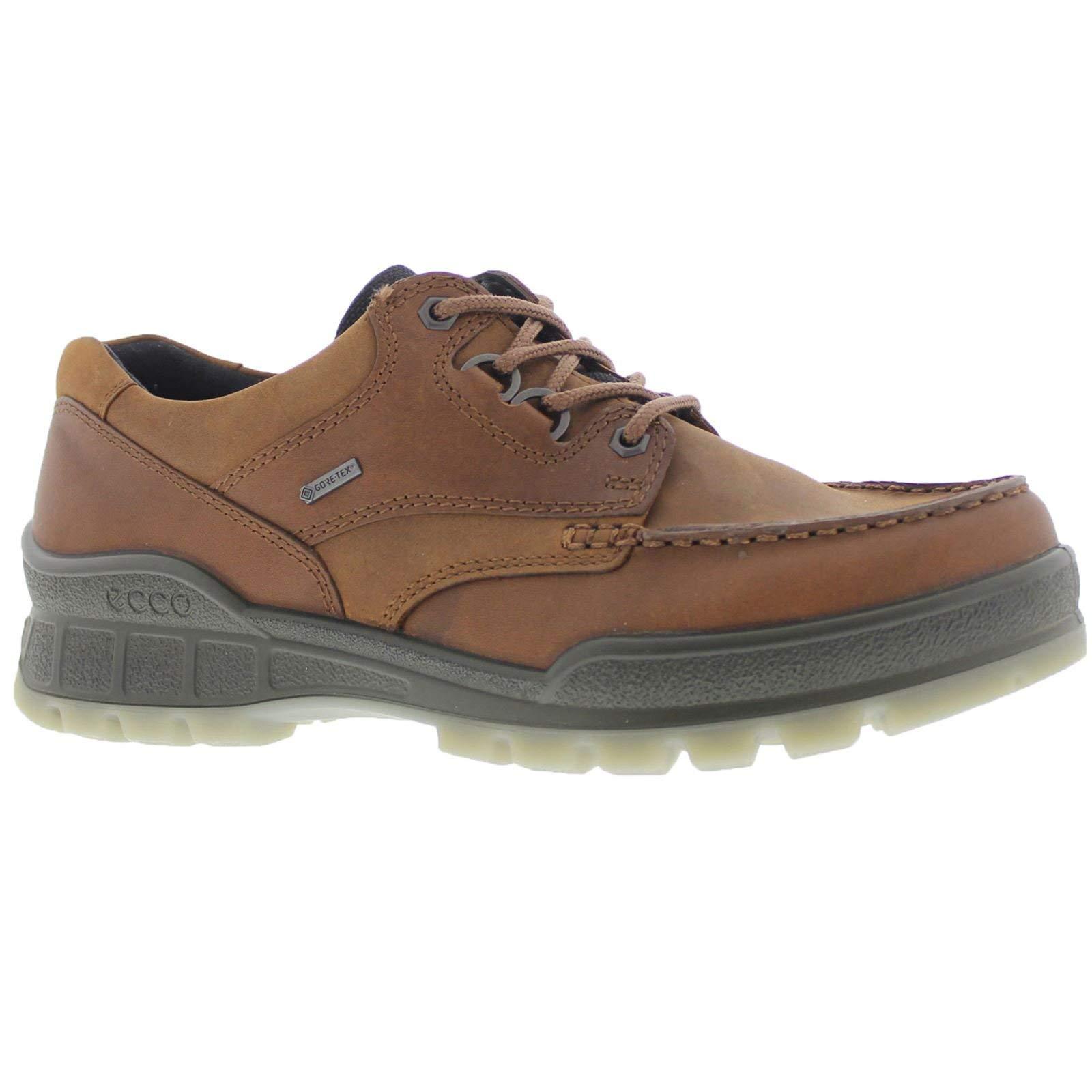 ECCO Men's Track 25 Low GORE-TEX waterproof outdoor hiking shoe, Bison/Bison, 46 M EU (12-12.5 US) by ECCO