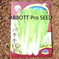 Chinese Celtuce Cabbage Greengrocery Vegetable Seed Meticulous Selection of Fine Varieties Disease Resistance Easy Plants ABBOTT