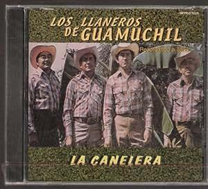 """Los Llaneros De Guamuchil """"La Canelera"""""""