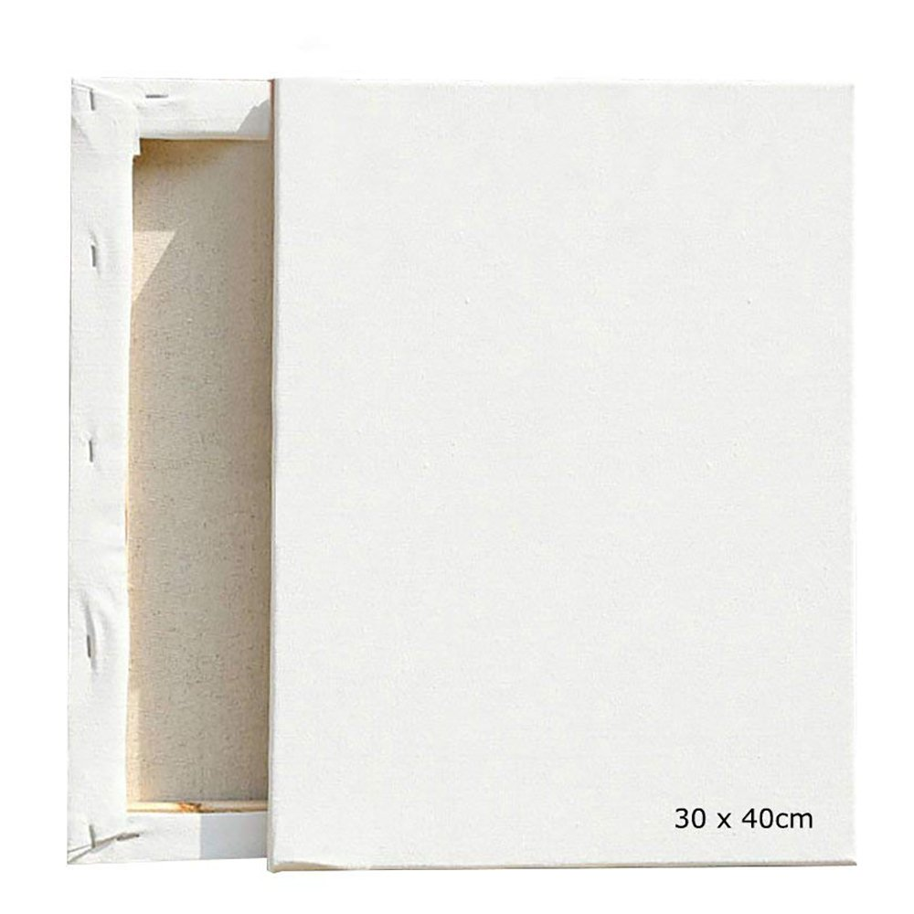 Canvas Frame Kit Oil Painting White Blank Square Flat Canva Artist Wooden Board Primed Paint Art Supplies Display for acrylic painting, painter, children and adults12x16/30x40cm (2pcs) centtechi