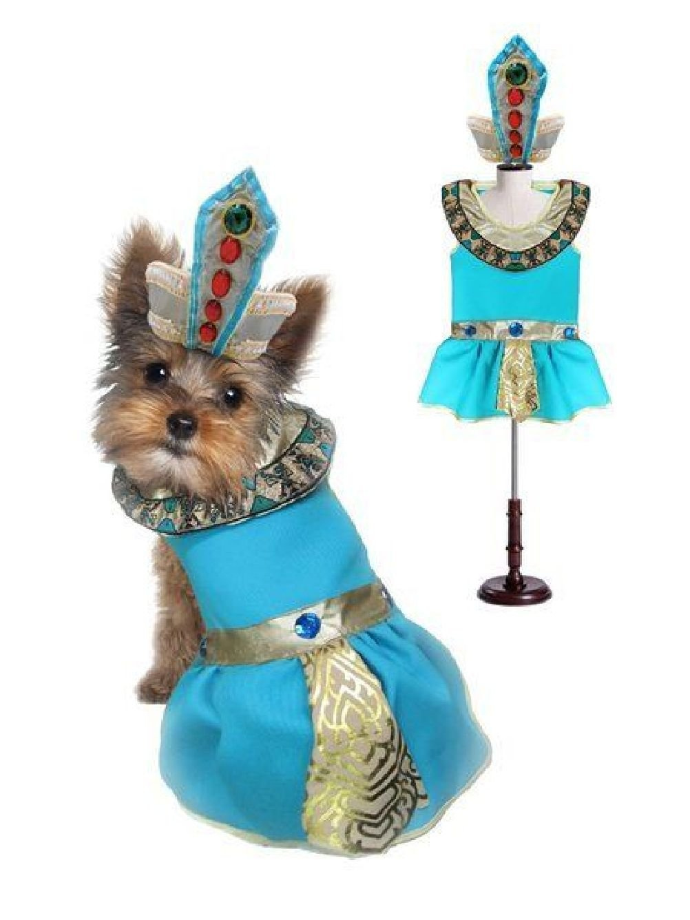 Cleopatra Dog Costumes-Dress Your Dogs As Jeweled Eygyptian Princess Outfit