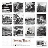 Steam Trains wall calendar 2017 (Art calendar)