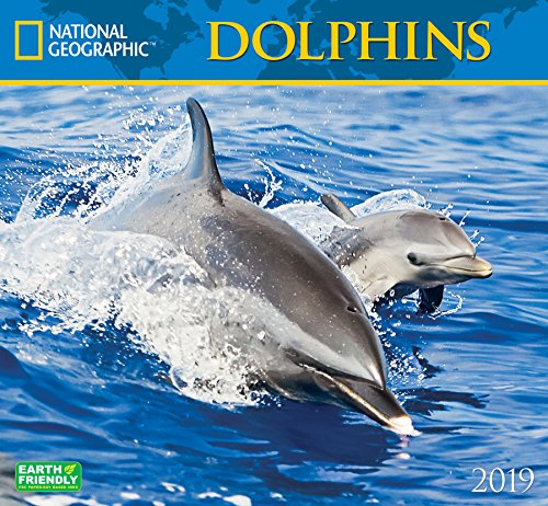 National Geographic Dolphins 2019 Wall Calendar