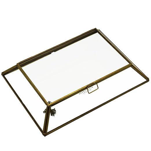 Orangerie de Metal y vidrio con tapa bandeja/caja de joyería para ...