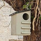 CKB Ltd® Squirrel House Nesting Box Made from Pine Wood Outdoor Wildlife Shelt