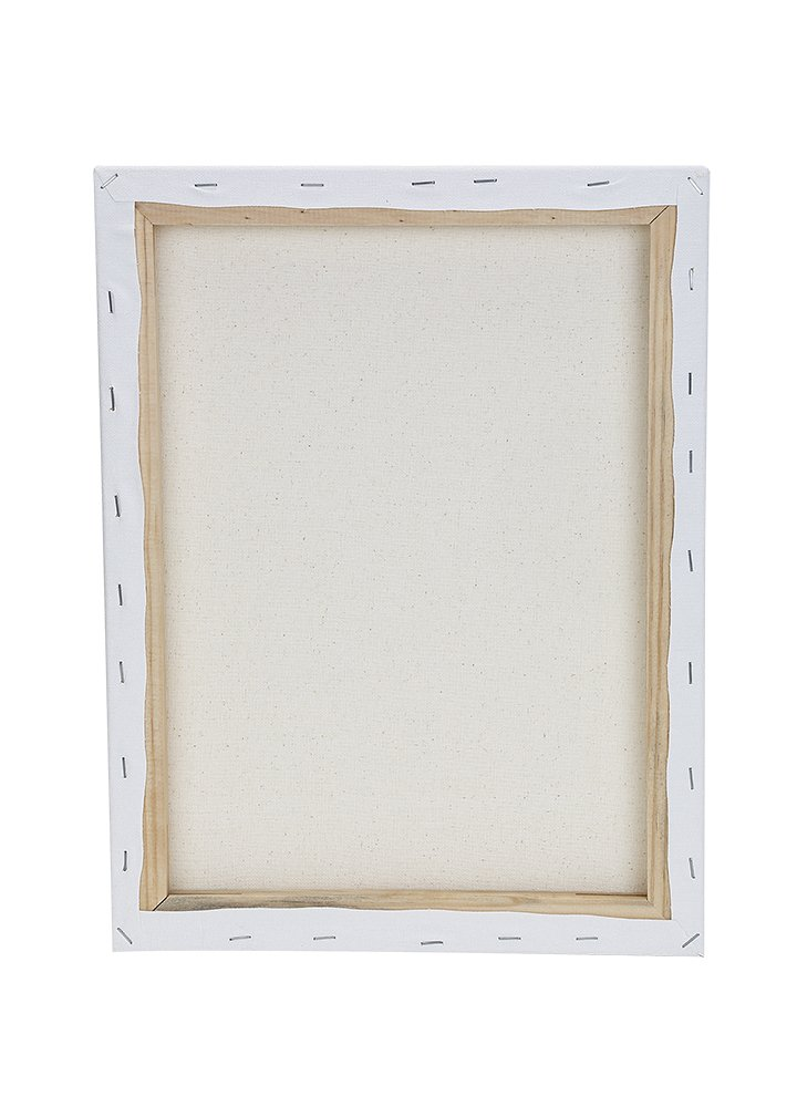 Academy Art Supply 12 X 16 inch Acid Free Stretched Canvas 6-Pack