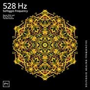 528 Hz Transformation and Miracles (DNA Repair)