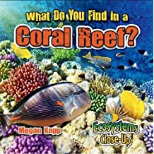 What Do You Find in a Coral Reef?