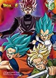 Dragon Ball Super: Goku, Vegeta, Trunks, Zamasu and Goku Black Group Wall Scroll, 33 x 44-Inches