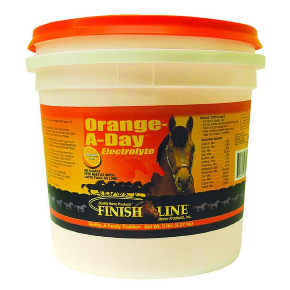 Finish Line Horse Mineral Electrolyte Supplement. Helps Keep horses Hydrated. No Sugars or Dyes added (Orange-A-Day) by Finish Line