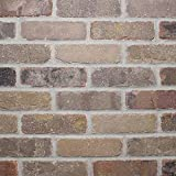 Colonial Collection Promontory Thin Brick - Case of 50 - 7.3 SF