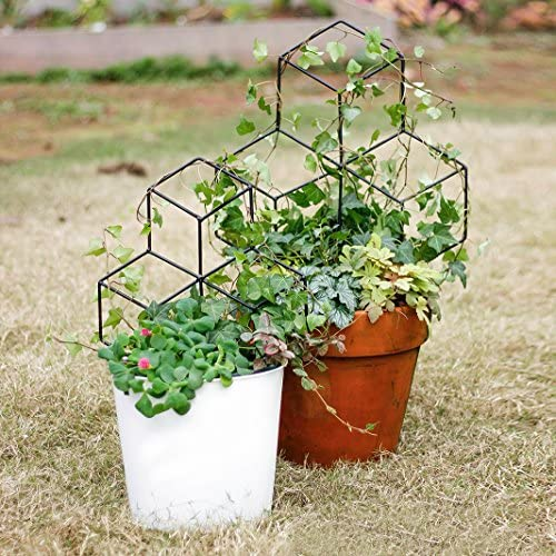 Mr Garden Lattice-Shaped Trellis Mini Trellis Garden Trellis for Potted Climbing Plants Support, 17.7 H, Black