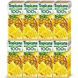キリン トロピカーナ 100% パインアップル 250ml紙パック×24本入×(2ケース)
