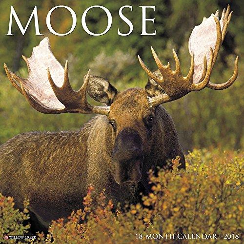 Moose Calendar - 6