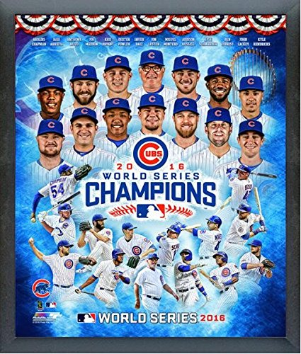Chicago Cubs 2016 World Series World Series Champions Team Photo (Size: 17