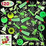 JOYIN 120 Pieces Halloween Glow in The Dark Bugs and Toys Glow Bugs, Plastic Bugs, Glow Bug Rings , Glow Bouncy Balls and Witch Fingers for Halloween Party Favors and Decorations