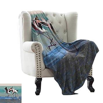 Amazon.com: BelleAckerman - Manta con diseño de flamenco ...