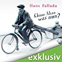 Kleiner Mann - was nun? Audiobook by Hans Fallada Narrated by Frank Arnold