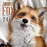 img - for Juniper Fox 2018: 16 Month Calendar Includes September 2017 Through December 2018 book / textbook / text book