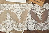 5 Yards Vintage Embroidered Lace Edge Trim Ribbon