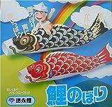 1 Piece 117''L (3 M) Black Koinobori Kite Children's Day Carp Streamer Windsocks Wind Chime
