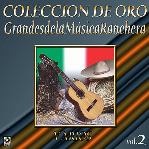 ... Colección de Oro Vol. 2 Grande.