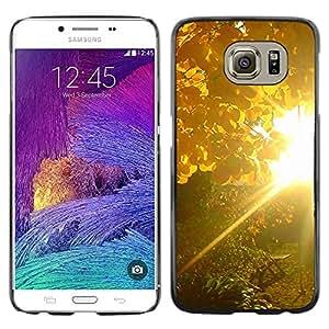 Exotic-Star ( Sunset Beautiful Nature 83 ) Fundas Cover Cubre Hard Case Cover para Samsung Galaxy S6 / SM-G920 / SM-G920A / SM-G920T / SM-G920F / SM-G920I
