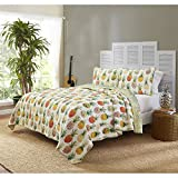 N2 2 Piece Ivory Orange Green Yellow Pineapple Quilt Twin Set, Colorful Pine Apple Bedding Hawaii Themed Ombre Hawaiian Tropical Beach Pattern Fruit Honolulu Watercolor Vibrant Abstract, Cotton