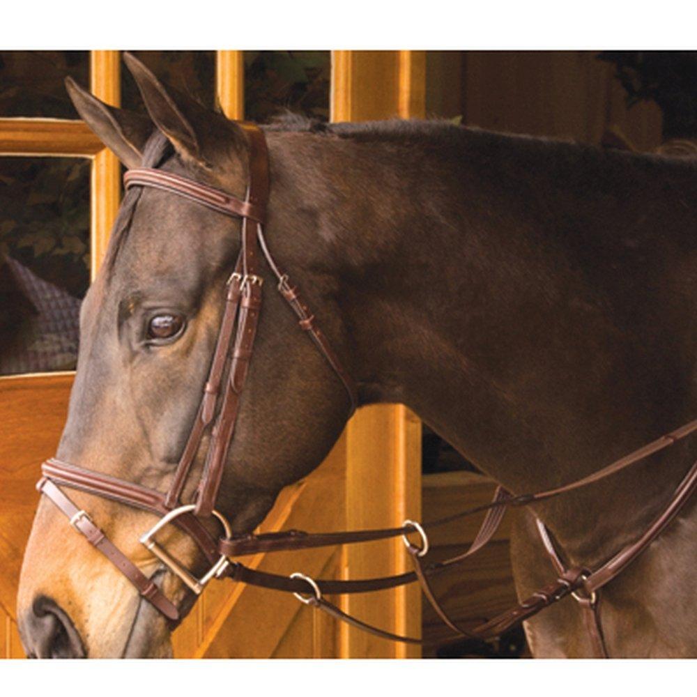 Exselle Elite Plain Raised Running Breastplate Pony ブラック B008OLSW7U