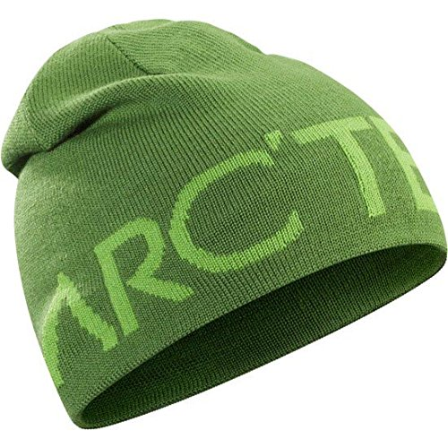 Arcteryx Word Head Toque - Hylidae/rohdei