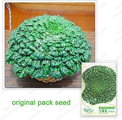50 semillas / pack, semillas de hortalizas, Wuta Wuta Tsai, Balcón verduras bonsai semillas de plantas de jardín: Amazon.es: Jardín