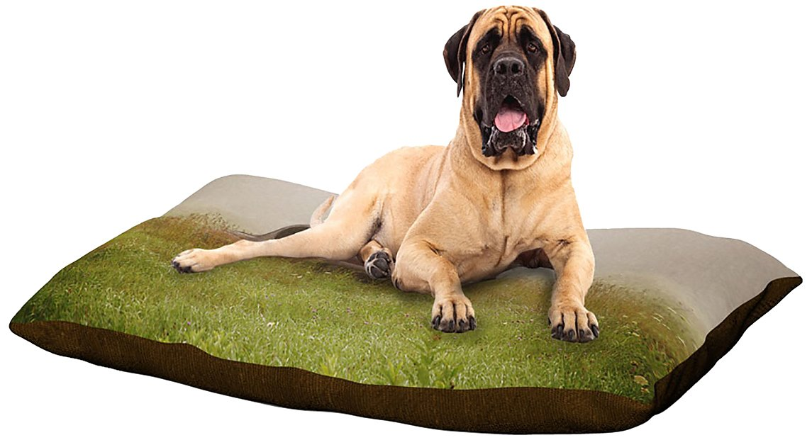 X-Large 40\ Kess InHouse Angie Turner Forgotten Car  Grass Dog Bed, 50 by 60-Inch