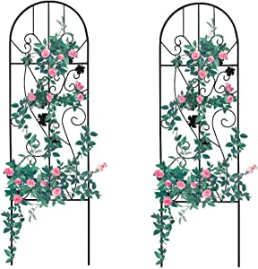 Garden Trellis for Vines and Climbing Plants, Black 2 Pack, Metal Wire Lattice Grid Panels for Cucumber & Vegetables, Clematis Support, Rose Vines, Durable & Sturdy Beautiful Plant Decor