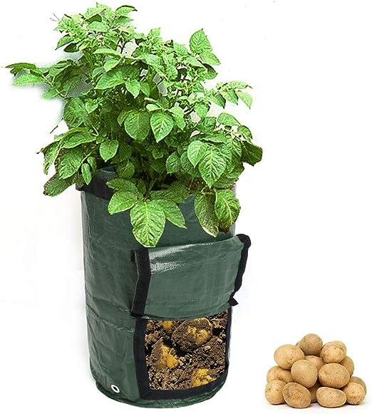 Bolsa para Cultivo de Papas, Maceta de 7 galones Recipiente para macetas Jardín Exterior Plegable Impermeable y Duradero con asa Bolsas para desechos de jardín 3 PCS: Amazon.es: Hogar