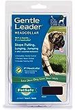 PetSafe Gentle Leader Head Collar with Training DVD