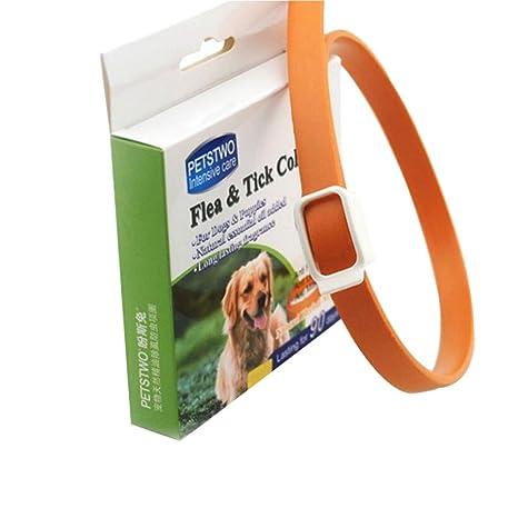 PanDaDa Collar Anti pulgas para Perro Gato Abrazaderas Natural Aceite Esencial Ajustable antimosquitos (Goma Flexible