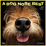 Dog Nose Best Wall Calendar, Funny Dogs by BrownTrout