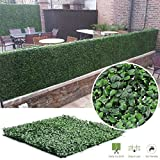Synturfmats Faux Artificial Boxwood Hedge Panels Indoor/Outdoor Privacy Fence Screen Greenery Mat 40x40in 6pcs in Pack
