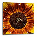 Cheap 3dRose dpp_30838_3 Colorful Summer Sunflower Flowers Flower Photography-Wall Clock, 15 by 15-Inch