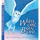 White Owl, Barn Owl: Read and Wonder