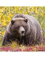 Grizzlies 2022 Wall Calendar (Bears)